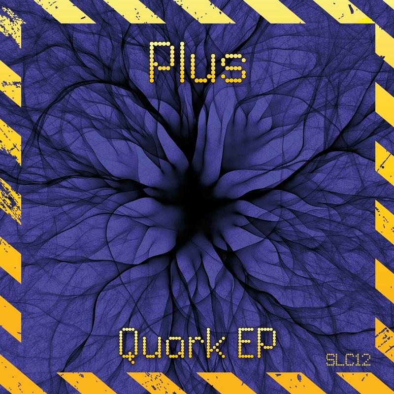 SLC12. Plus –Quark