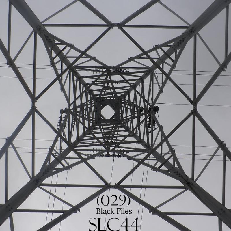 SLC44