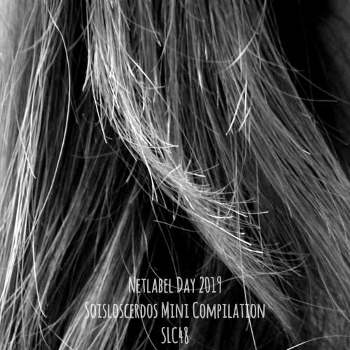 Netlabel_Day_2019-Soisloscerdos_Compilation-SLC48-Cover